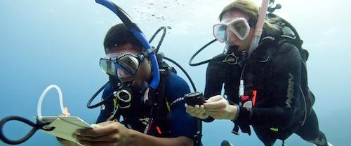 Diplôme de plongée niveau 2 (Advanced Open Water Diver Padi) à St Raphaël