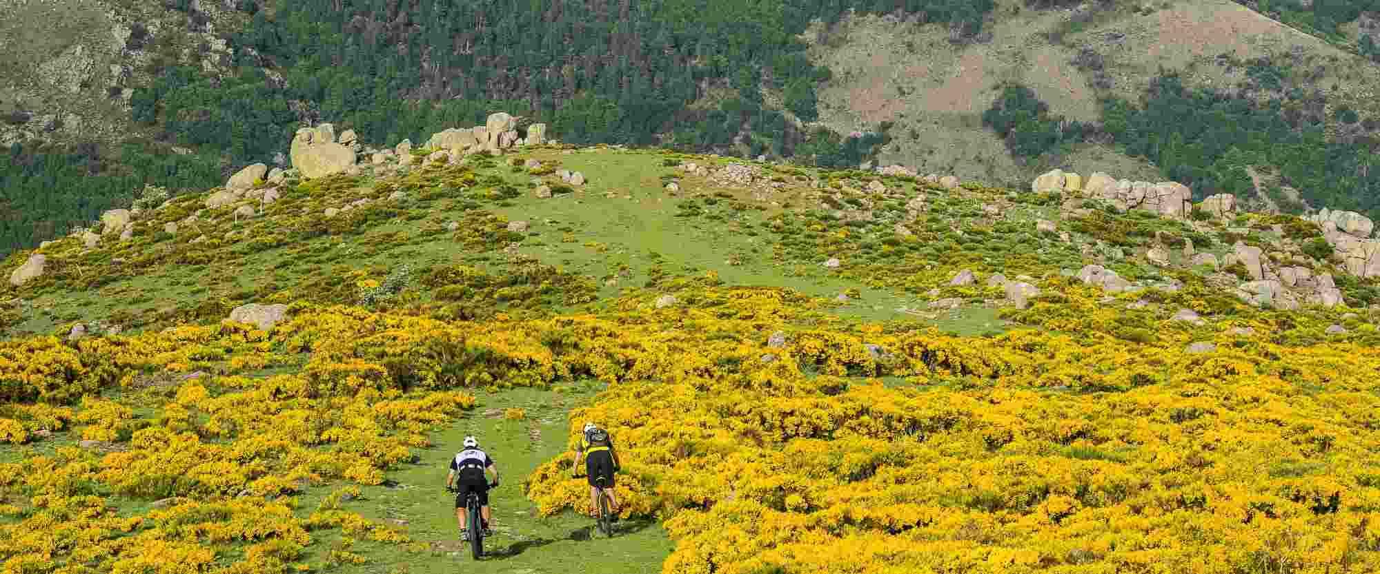 Randonnée sur la Montagne Ardéchoise