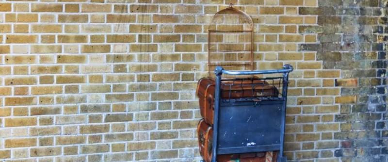 Escape game Harry Potter outdoor à Cap Esterel
