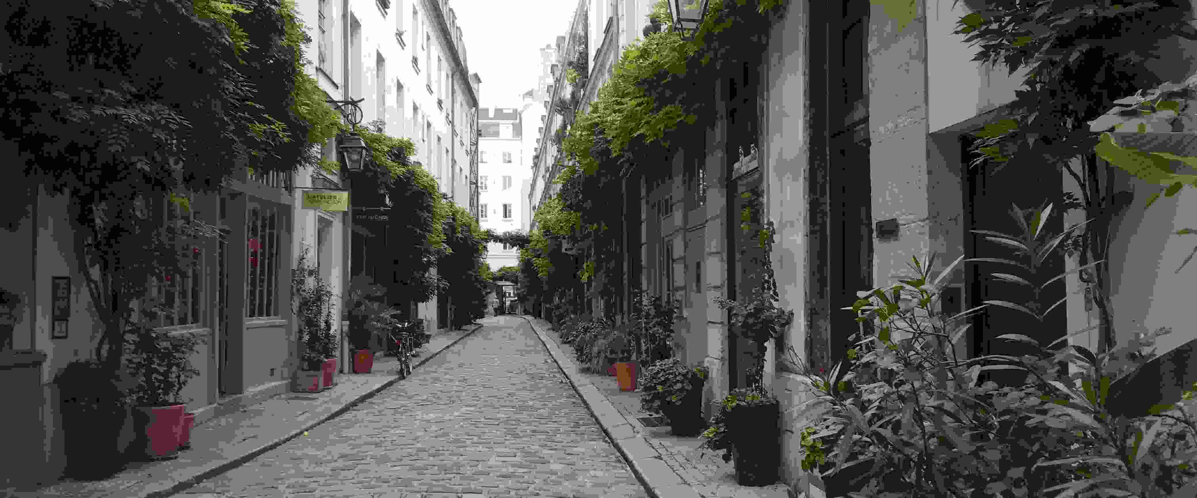 L'âme de Paris… à trottinette !